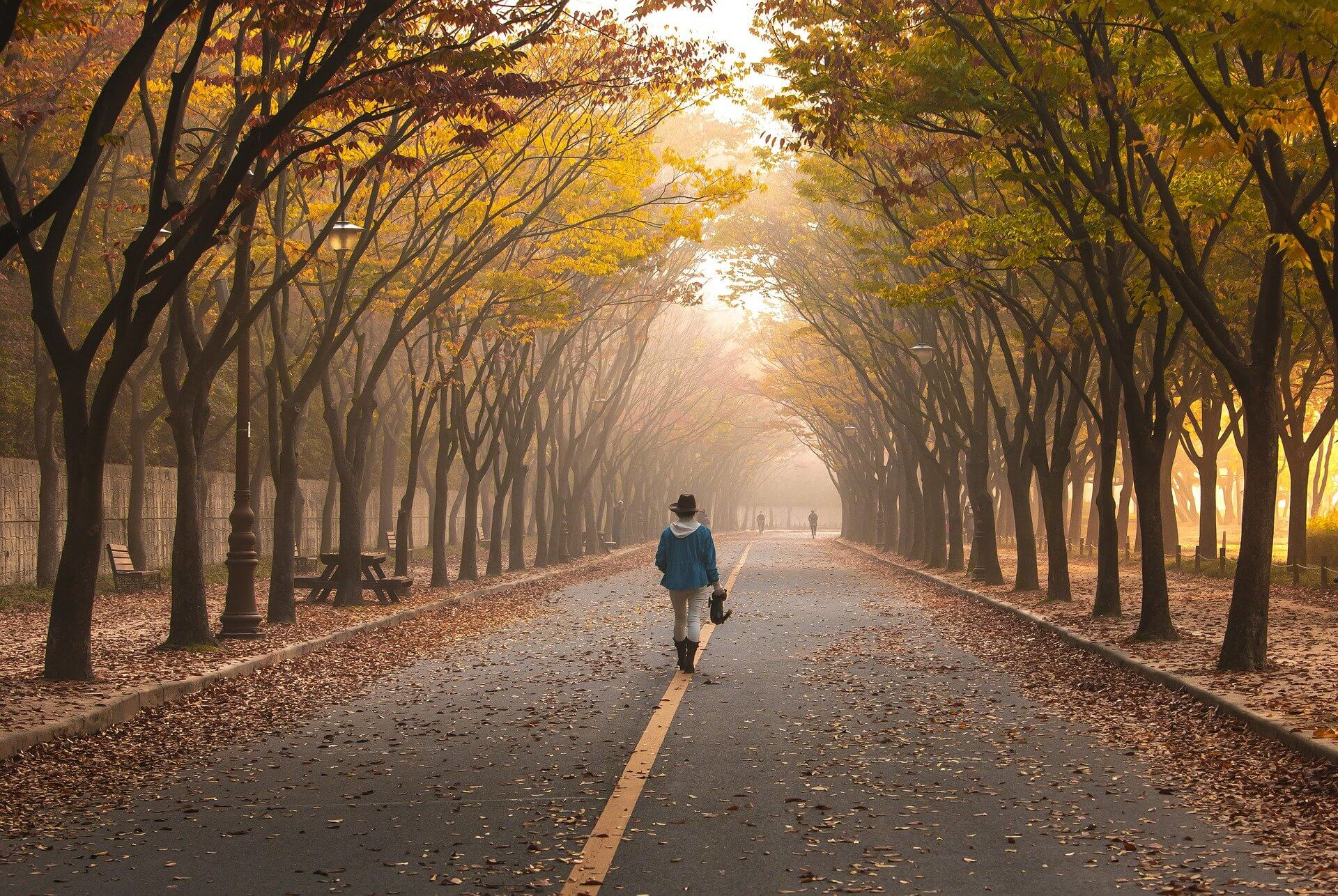 What do you want- Person walking down road with yellow trees hanging over