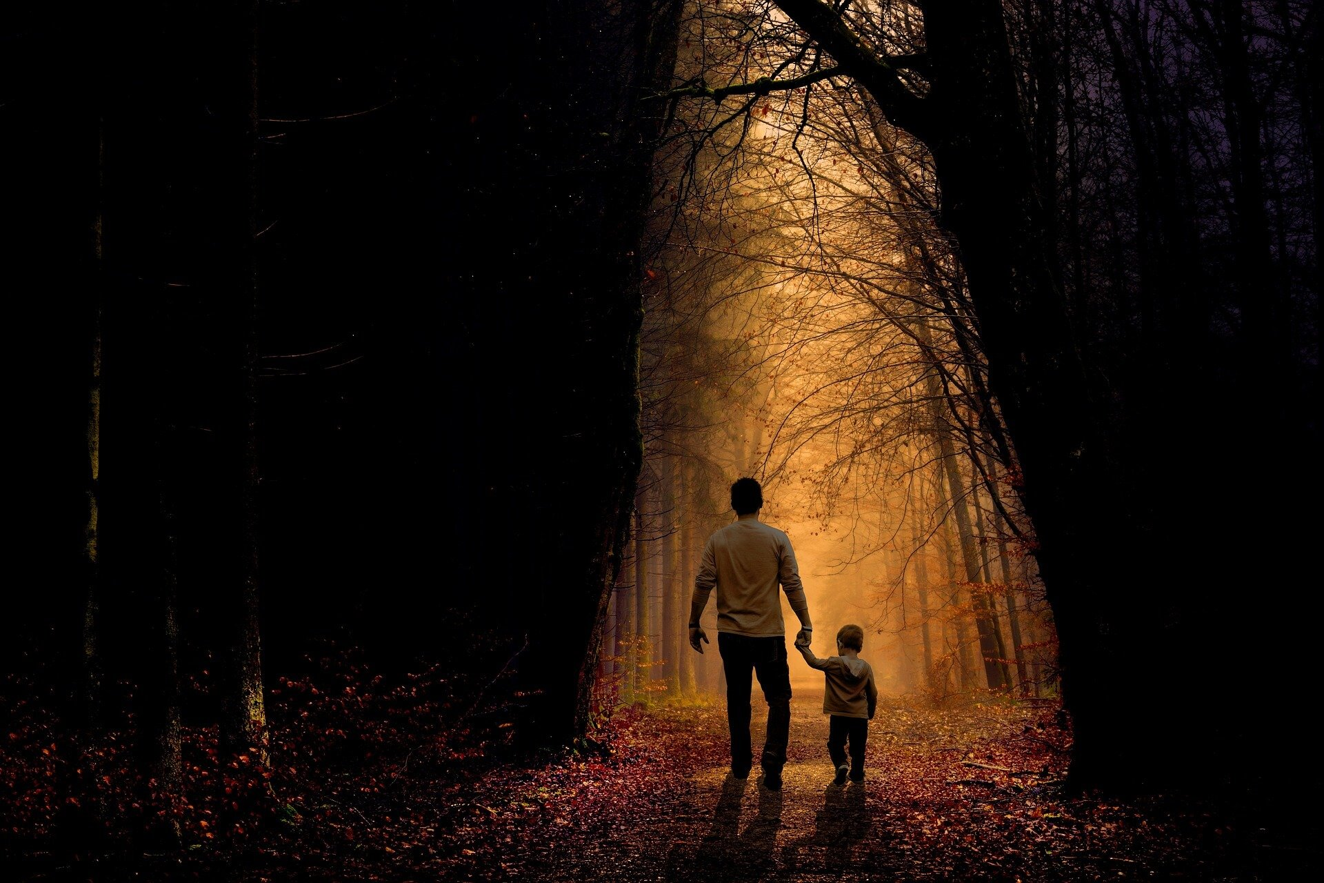 Dad and Son walking through Forest